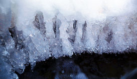Ice water. Icicles hanging from the branch resulting from the melting snow Stock Photo