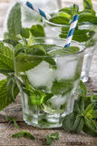 Ice water with mint Royalty Free Stock Photo