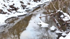 Ice water running in a fast spring creek. Falling snowflakes. Running streams of clean ice water. Spring has come. Snow melting on creek banks. Fast flowing stock video