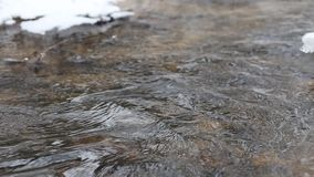 Ice water running in a fast spring stream. Tree branches hanging over the creek stock footage