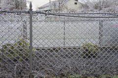 Ice wire mesh fence Stock Images