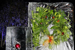 Ice wreath Stock Images