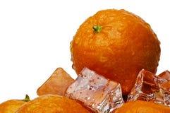 ice8 μανταρίνι Στοκ φωτογραφίες με δικαίωμα ελεύθερης χρήσης