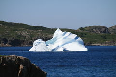 Iceberg. Off the coast of Newfoundland royalty free stock photos