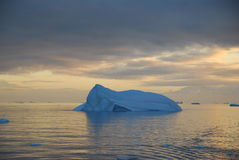 Iceberg. Blue iceberg in the sunset Stock Image