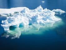 iceberg zdjęcia stock