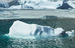 Iceberg Stock Photography