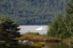 Iceberg in acque, parco del ghiacciaio di Mendenhall, Alaska immagini stock libere da diritti