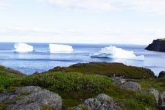 Iceberg Alley. Iceberg at Fishing Point, St. Anthony NL stock photography