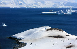 Iceberg, Antarctic mountain in the snow Royalty Free Stock Photos