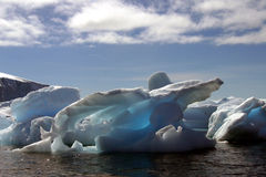 Iceberg in antarctica. In summertime royalty free stock photos