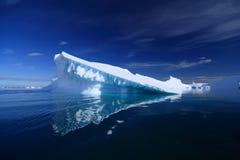 Iceberg in Antarctica Stock Image