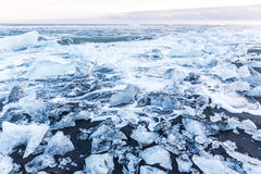 Iceberg beach Iceland Stock Photography