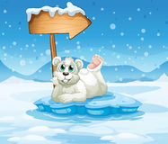 An iceberg with a bear and an arrow Royalty Free Stock Photo