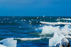 An Iceberg Being Broken By The Waves Royalty Free Stock Photos