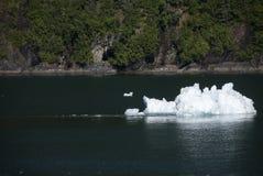 Iceberg Bit Stock Images