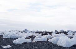 Iceberg on the black rock beach Stock Images