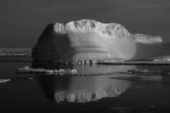 Iceberg black-white Royalty Free Stock Images