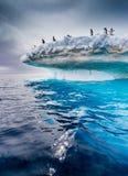 Iceberg bonitos com os pinguins do adelie no fluxo superior perto da península antártica imagens de stock