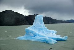 Iceberg, Chile Stock Images