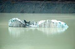Iceberg - cocinero del soporte Fotografía de archivo