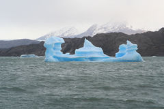 Iceberg curieux Photographie stock