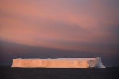 Iceberg da tabela na Antártica - meia-noite Sun Fotos de Stock Royalty Free