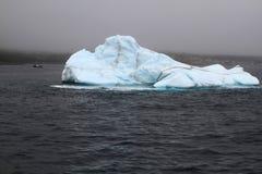 Iceberg dans des taureaux de baie, Terre-Neuve dans le jour pluvieux de vieille galoche Photo stock