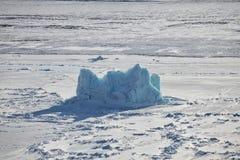 Iceberg dans l'océan arctique congelé Photo libre de droits