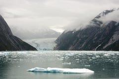 Iceberg and Dawes Glacier at Endicott Arm Fjord. Iceberg in front of Dawes Glacier at Endicott Arm Fjord, Alaska Stock Photography