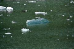 Iceberg de hielo azul en el océano en Tracy Arm Fjord, Alaska imágenes de archivo libres de regalías