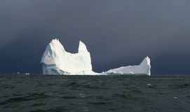 Iceberg de l'Antarctique Photos stock