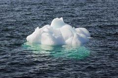Iceberg de la nadada Nuuk, Groenlandia En mayo de 2014 Foto de archivo