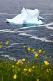 Iceberg di fusione fotografie stock libere da diritti