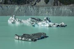 Iceberg di galleggiamento giganti sul lago glacier di Tasman nel cuoco National Park, isola del sud del supporto di Aoraki della  immagini stock libere da diritti