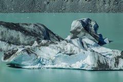 Iceberg di galleggiamento giganti sul lago glacier di Tasman nel cuoco National Park, isola del sud del supporto di Aoraki della  fotografia stock libera da diritti