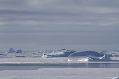 Iceberg e banquisas de gelo em águas do inverno do Peninsu antártico Fotos de Stock Royalty Free
