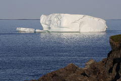 Iceberg During Early Morning in Goose Cove Stock Photography