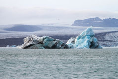 Iceberg em Islândia Fotografia de Stock