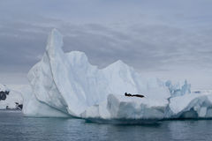 Iceberg en Antarctique Photographie stock