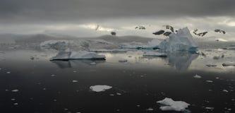 Iceberg en Antarctique Image stock