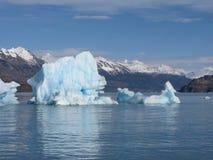 Iceberg en Calafate Fotografía de archivo libre de regalías