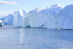Iceberg fiord. In the ilulissat fiord in west greenland Royalty Free Stock Photo