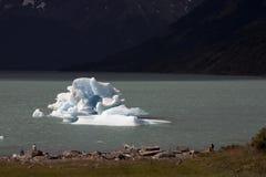 Iceberg floating on the lake. Royalty Free Stock Image