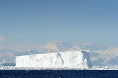 Iceberg. In front of coast Antarctica Stock Image
