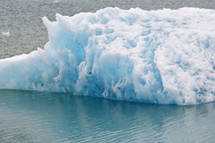 Iceberg in Glacier Bay in Alaska Stock Images