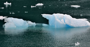 Iceberg in Glacier Bay in Alaska Stock Photos