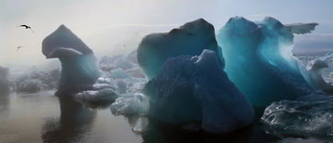 Iceberg in the glacier lagoon. Blue iceberg in the glacier lagoon Royalty Free Stock Photography