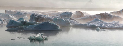 Iceberg in the glacier lagoon. Iceland. Stock Photos