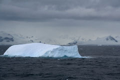 Iceberg glowing in an overcast dawn Royalty Free Stock Photos